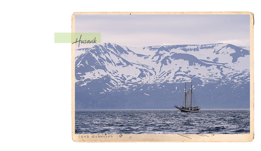 carte postale 10b_850x491