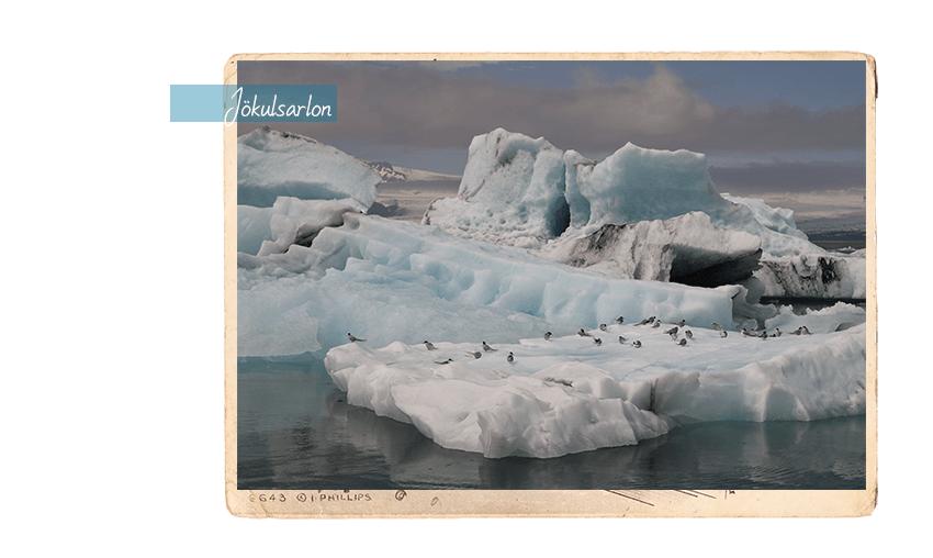 carte postale 1c_850x508