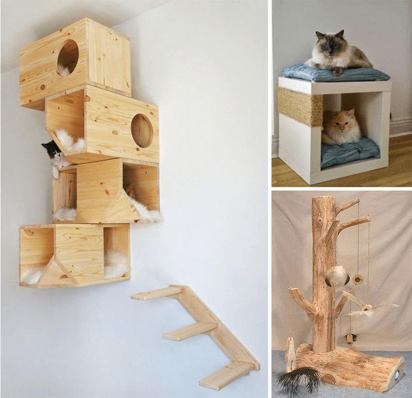 maison originale chat