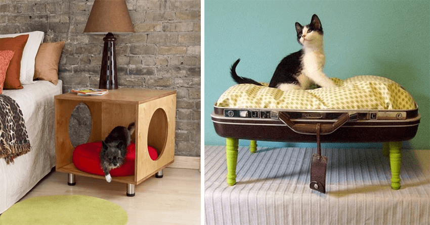 mobilier original chat