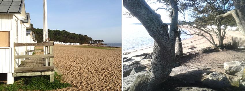 Des id es d co pour un style maison de campagne et bord de for Decoration maison vacances mer