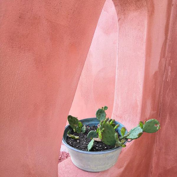 projet décoration escale design cathy brois piscine terrasse